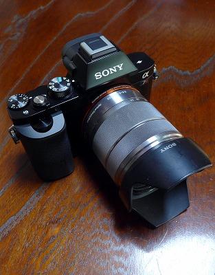 s-P1000805L.jpg
